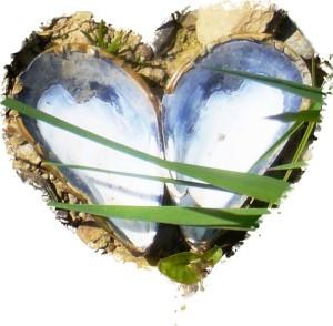 Untitled-TrueColor-01 heart cut