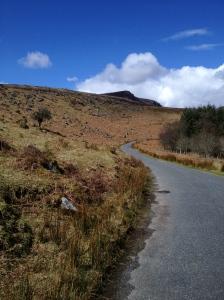 Winding Comeragh road
