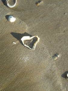 sand heart in shell
